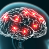 Neuromarketing la ciencia de las ventas al subconsciente